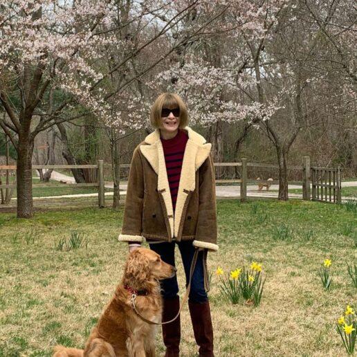 Η Anna Wintour γράφει για όλα όσα έμαθε από το Vogue Global Conversations