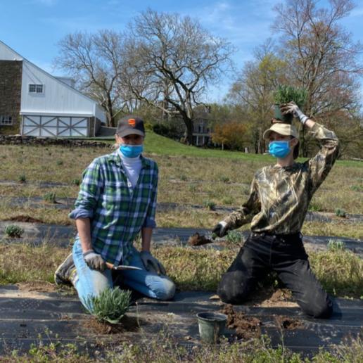 Gigi και Bella Hadid δοκιμάζουν τις ικανότητες τους στην κηπουρική