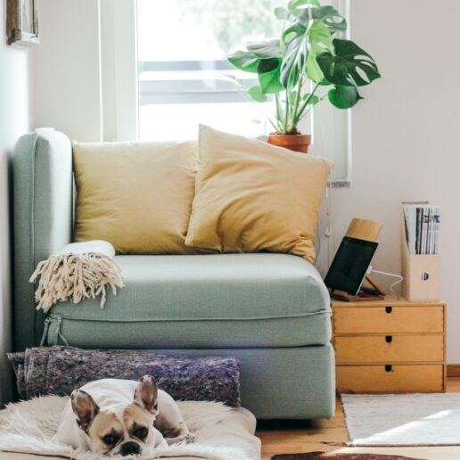 8 τρόποι να δημιουργήσετε κλίμα ηρεμίας κατά τον περιορισμό στο σπίτι