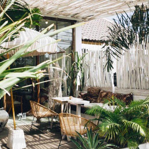 Σας αρέσει η κηπουρική; 14 Instagram accounts για να ακολουθήσετε τώρα