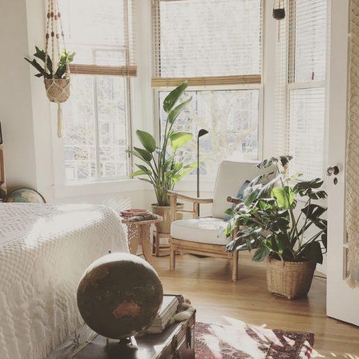Wellness: Φυτά εσωτερικού χώρου για έναν καλύτερο ύπνο