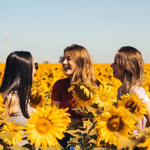 10 φλοράλ αρώματα που μυρίζουν λουλούδια