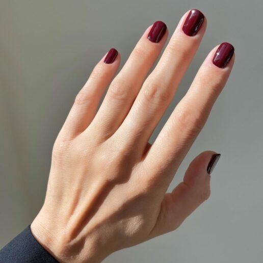 Οι 6 φθινοπωρινές αποχρώσεις στα νύχια σύμφωνα με τους Pros