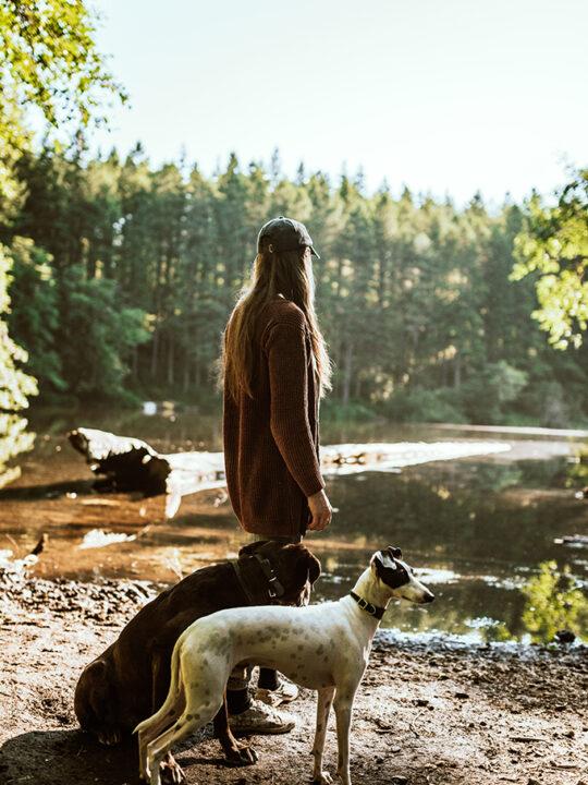 Forest Bathing: Τι μπορεί να προσφέρει μια βόλτα στη φύση;
